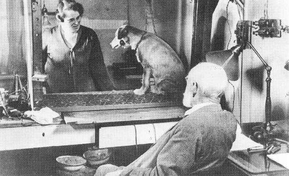 Pavlov, la fisiología digestiva y el reflejo condicionado