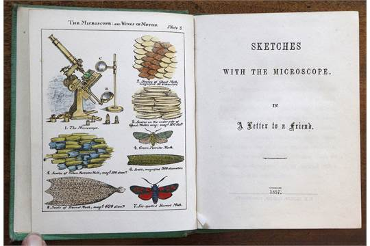 The Microscope or Descriptions os various objects of special interest and beauty. Tercera edición (London: Groombridge and Sons, 1869)